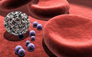 Тромбоциты: норма у женщин по возрасту, таблица и причины пониженных и повышенных показателей