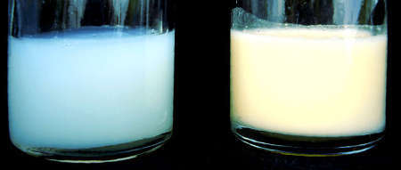 Переднее и заднее молоко: чем отличается, дисбаланс, как правильно кормить
