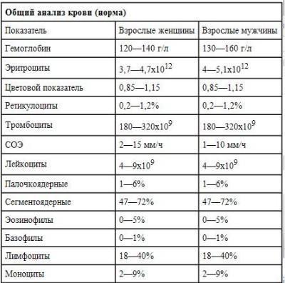 Анизоцитоз: что это такое в общем анализе крови у взрослых, причины и лечение