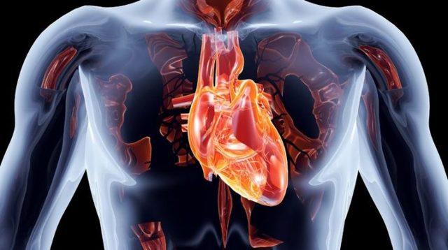Трикуспидальная регургитация 1,2,3,4 степени: что это такое, симптомы и лечение