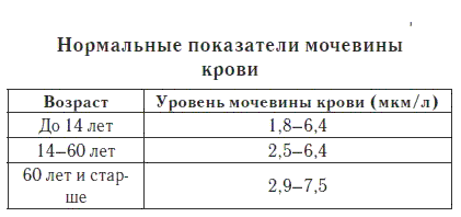 Мочевина в крови: что это такое, норма у женщин и мужчин по возрасту (таблицы)