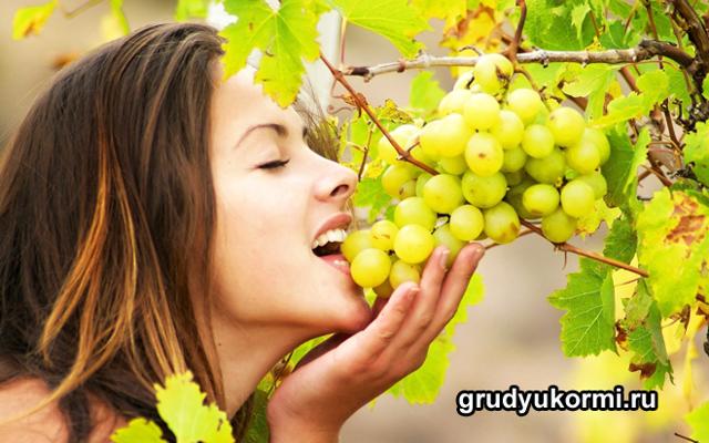 Можно ли виноград при грудном вскармливании: диета кормящей мамы при лактации