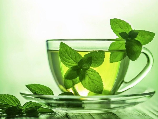 Мята при грудном вскармливании: можно ли чай с мятой кормящей маме на ГВ