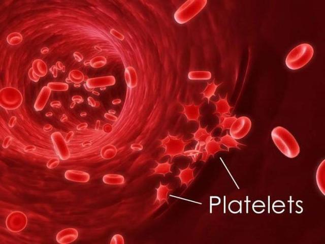 Тромбоциты: норма по возрасту, причины повышенных, и пониженых, диагностика и лечение