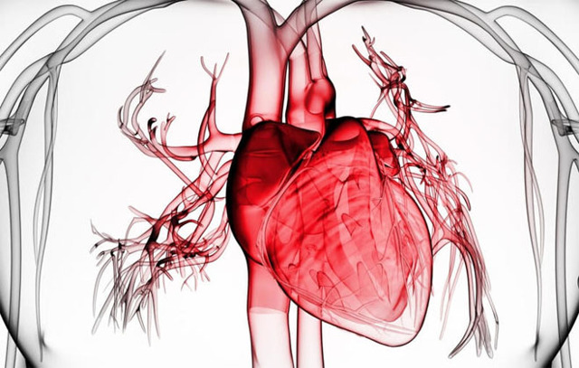 Первая помощь при инфаркте: алгоритм действий в домашних условиях