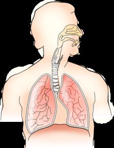 Лёгочная гипертензия: что это такое, симптомы, лечение и сколько с этим живут