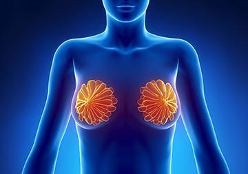 Трепанобиопсия молочной железы: что это такое, как проводится, возможные осложнения