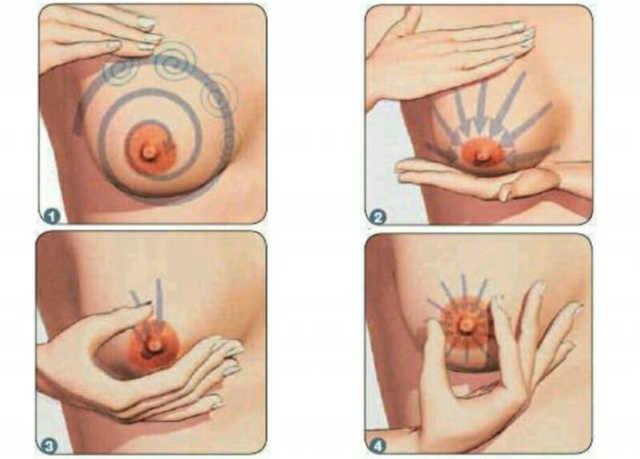 Набухла и болит грудь: основные причины, по которым набухают молочные железы