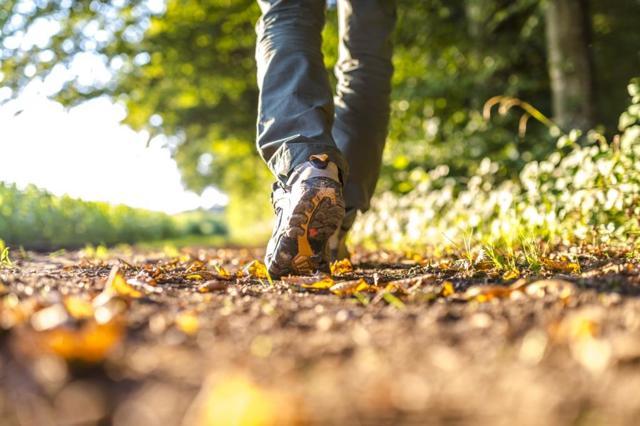 Синяки на ногах без причины у женщин и мужчин: причины, и к какому врачу обратиться