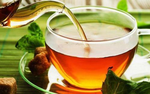 Мастофитон - чай при мастопатии: как правильно принимать зеленый фиточай