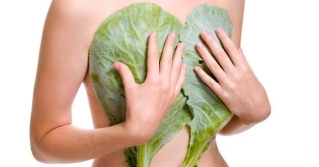 Лечение мастопатии народными средствами: рецепты, которые помогли многим
