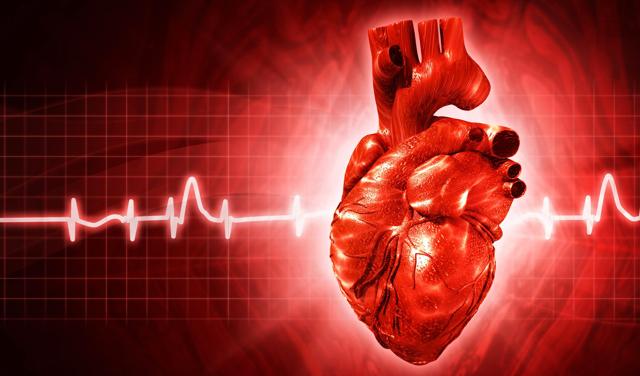 Как улучшить кровообращение организма: упражнения, препарапты, питание