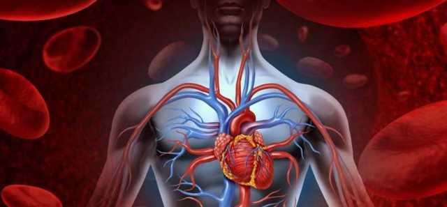 Как улучшить кровообращение головного мозга: упражнения, диета, препараты